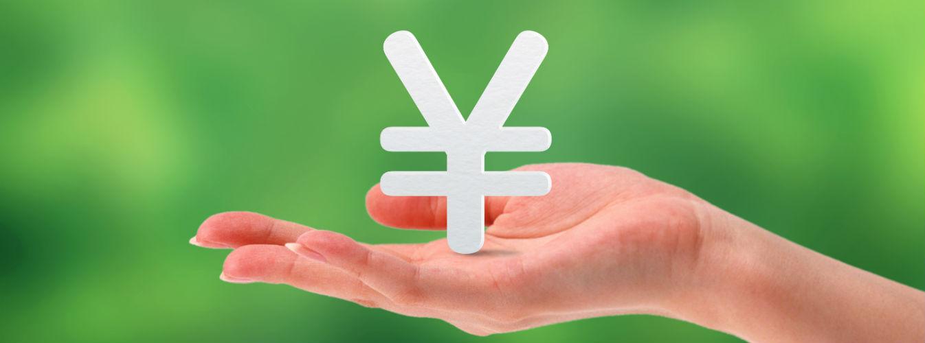 レイクALSAの金利の特徴や金利決定方法
